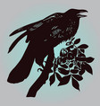 the raven vector image vector image