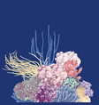 background with colorful coral reef vector image vector image