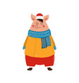 character funny pig on isolated background vector image