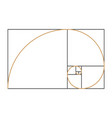 fibonacci spiral symbol vector image