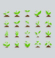grass patch sticker icons set vector image vector image