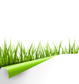Green grass with ripped paper sheet isolated on vector image vector image