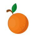 orange fresh fruit icon vector image