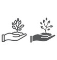 sprout in hand line and glyph icon farming vector image vector image