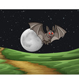 Bat at night vector image vector image