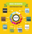 bridge infographic concept flat style vector image vector image