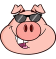 Cartoon pig with glasses