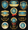 luxury golden retro labels collection 10 vector image vector image