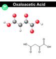 Oxaloacetic acid molecule vector image vector image