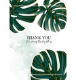 palm leaves tropical design monstera jungle vector image vector image