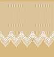 vintage lacy border on beige background vector image