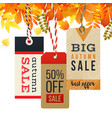 autumn sale tags in vintage style vector image