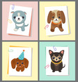 dogs stickers collection vector image vector image