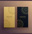 elegant set of mandala banner card vector image