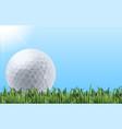 golf ball on grass vector image vector image