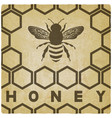 honey bee on honeycomb vintage background vector image vector image