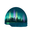 northern lights over deep forest icon vector image