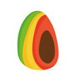 avocado and papaya food fresh nutrition vector image
