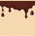 Chocolate dripping on waffle vector image vector image