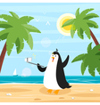 flat style of penguin selfie on the beach vector image vector image