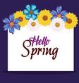 hello spring decorative design vector image