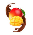 mango fruit in chocolate coffee cacao vector image