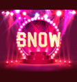 stage show and show with bright vector image vector image