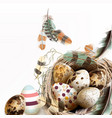 with easter eggs bird nest feathers vector image vector image