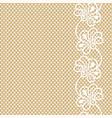 flower lace border on beige background vector image vector image