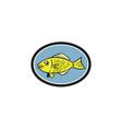 Gourami Fish Side View Oval Cartoon vector image vector image