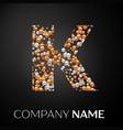 letter k logo gold-silver dots alphabet logotype vector image