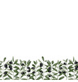olive branch seamless border vector image