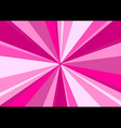 Rays Radius Background Center Pink vector image vector image