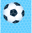 Ball in the net vector image