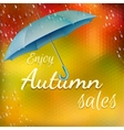 Enjoy autumn sales EPS 10 vector image