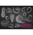 fruits chalk sketch icons on blackboard vector image vector image