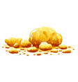 group golden nuggets isolated vector image vector image