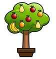 Magic fruit tree vector image vector image