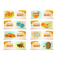 natural honey horizontal banners vector image vector image