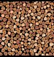 buckwheat food seamless pattern organic vector image