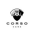 cane corso dog head mastiff italy logo icon vector image vector image