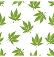 cannabis leaf seamless on a white background vector image vector image