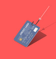 credit card on fishing hook over scarlet vector image