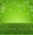 green grass border with sunburst and bokeh vector image vector image