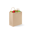 Grochery bag with fruits vector | Price: 1 Credit (USD $1)