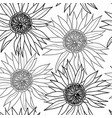 hand drawn black and white sunflower seamless vector image vector image