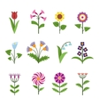 Stylized minimalistic flowers vector image vector image