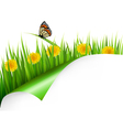 Summer background with dandelions and a butterfly vector image vector image