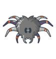 tarantula icon cartoon style vector image vector image