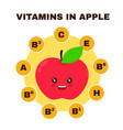 vitamins in apple infographic flat vector image vector image